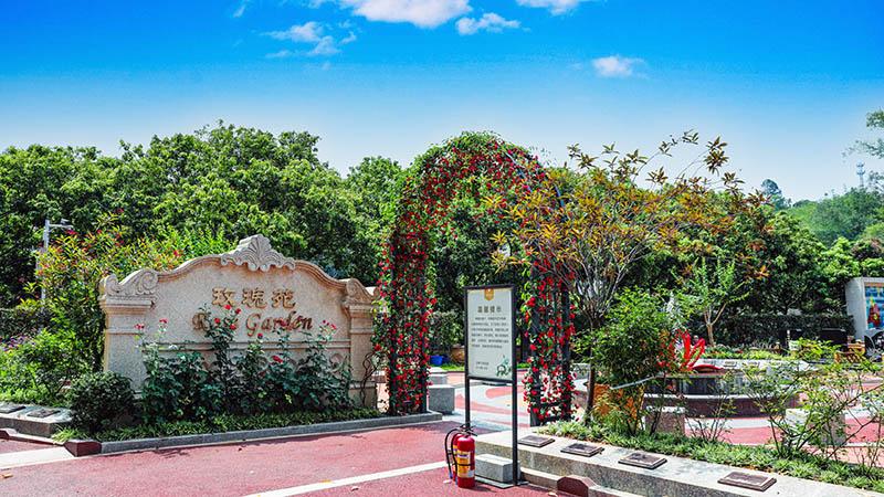 玫瑰苑 生态艺术