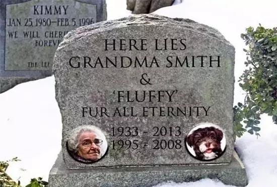 3人宠可以合葬?