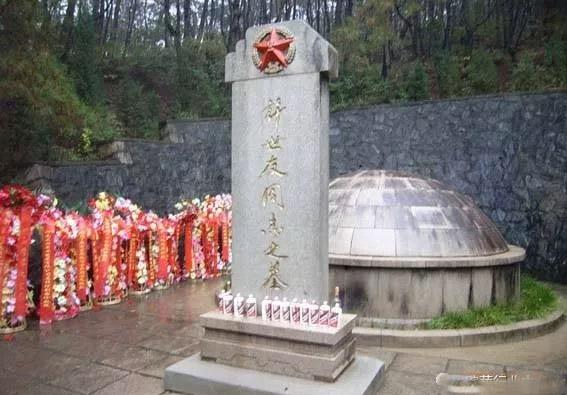 3许世友的葬具是楠木做成的